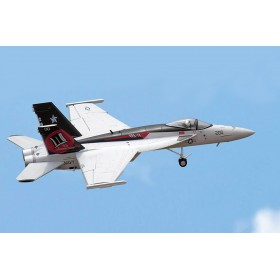 F/A-18E Super Hornet United States Navy VFA-14 Tophatters, NH200,