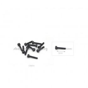 Cap Screw 2x16mm (10pcs)