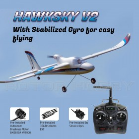 DYNAM Hawksky V2 1370mm RC Airplane, 6-Channel SRTF